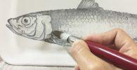 como-pintar-ceramica